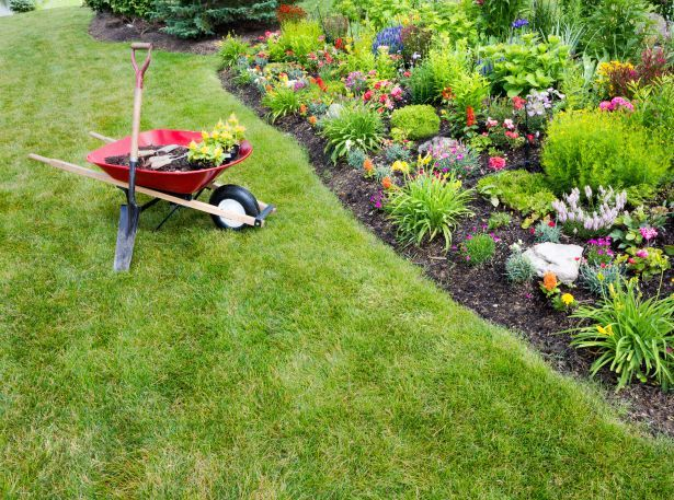 garden grass wheelbarrow