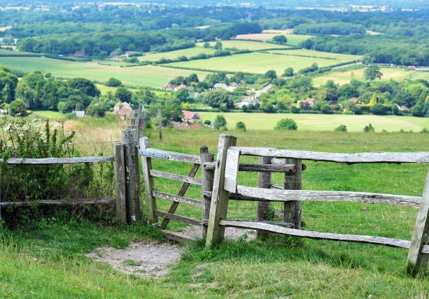sussex downs fence country